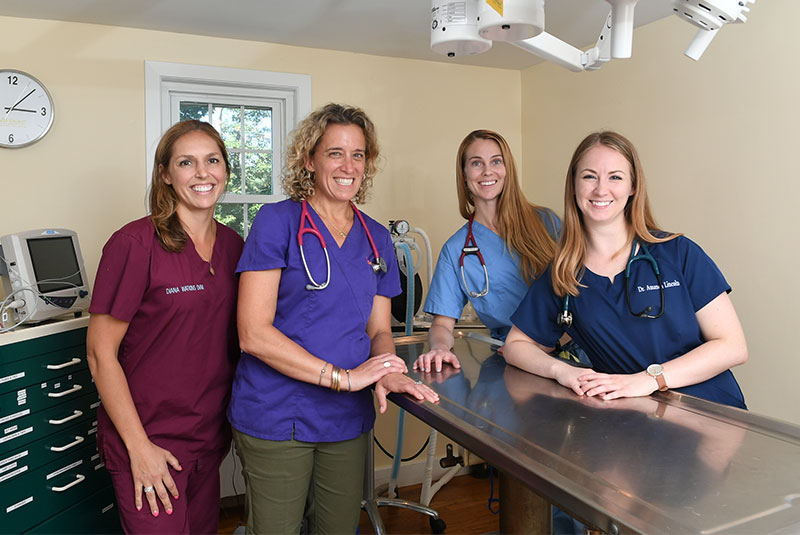 Hingham Animal Clinic Reviews